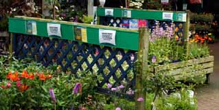 images/stories/header/majjun/right/HC01.jpg